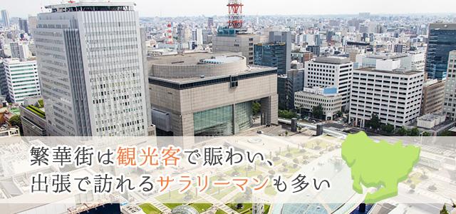 愛知県の地域情報・特色